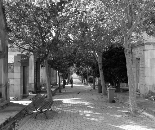 Black and white photograph of a path lined with mausoleums in Cemitério de Agramonte by Gillian Hebblewhite 2018 ©